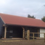 Stable with incorporated store and car garage